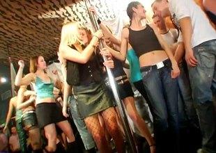Dick worshiping blond bimbos sucking knobs handy a sex party