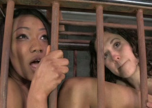 Those submissive lesbian babes are into some kinky burn the midnight oil